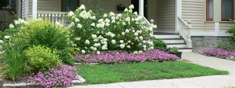 Flower Beds Around House Hydrangeas What S Natalie Doing