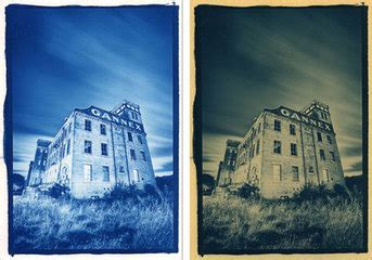 sepia changes picture colors into fifty shades of blue a tutorial on the cyanotype process