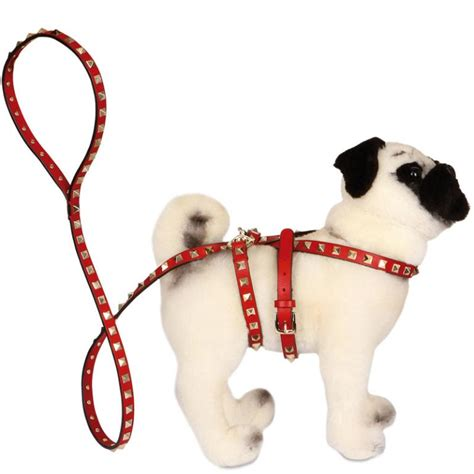 valentino pugs fashion designers dress pug dogs for unicef