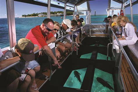 glass bottom boat cruise green island reef tour full day