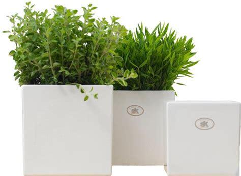Gartenartikel Günstig Kaufen by 252 Bertopf Viereckig Wei 223 Bestseller Shop