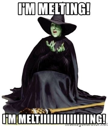 Witch Meme - i m melting i m meltiiiiiiiiiiiiiiing wicked witch of