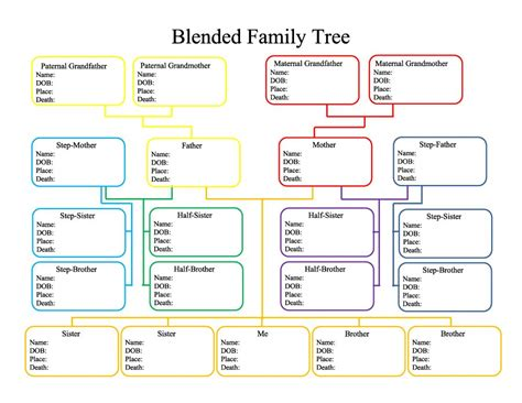 printable family tree with aunts and uncles printable family tree with siblings printable pages