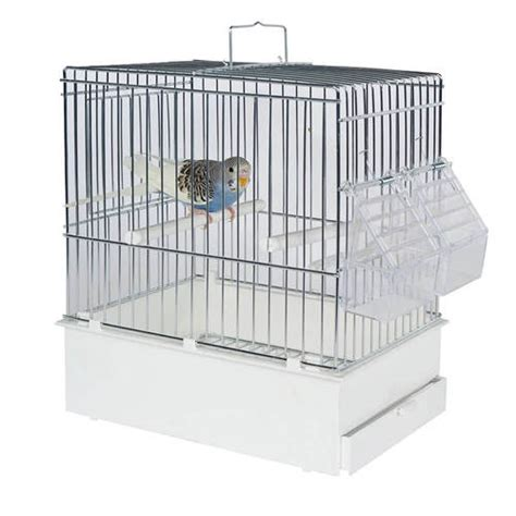 pet ting small parrots birds tall transport cage white