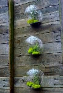 diy terrariums easy the garden glove