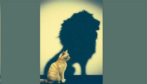 Thinking Big 劦崧 寘 寘 綷