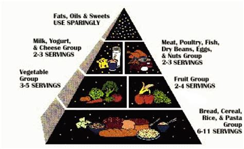 vegetables u can eat on atkins ellis toussier s guide food guide pyramid