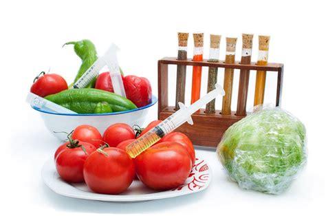 alimentos transgenicos alimentos transg 233 nicos 191 estamos seguros