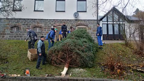 weihnachtsbaum aufstellen ortsgemeinde harbach