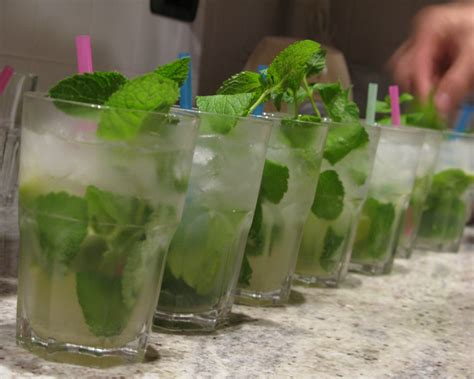 mojito recipe the mighty mojito recipe dishmaps