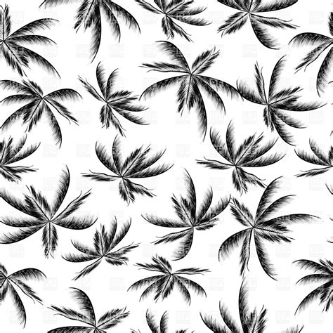 palm leaf pattern vector free coloring pages of palm tree leaves
