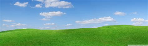 wallpaper green scenery green scenery wallpaper top backgrounds wallpapers