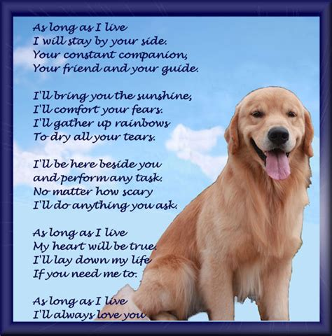 golden retrievals poem pin poem our died on