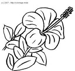 Coloriage 224 Imprimer Nature Fleurs Num 233 Ro 3126