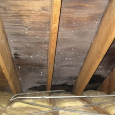 bathroom condensation solution roof condensation solutions corrugated metal roof condensation sc 1 st metal roofing