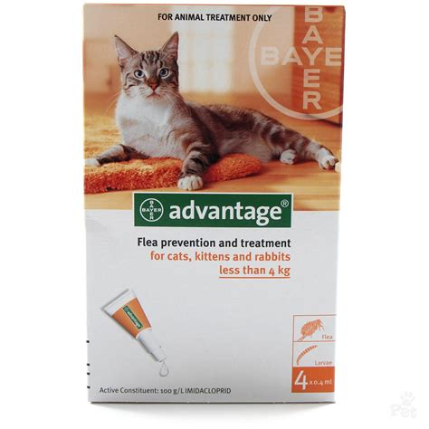 flea medicine advantage flea treatment
