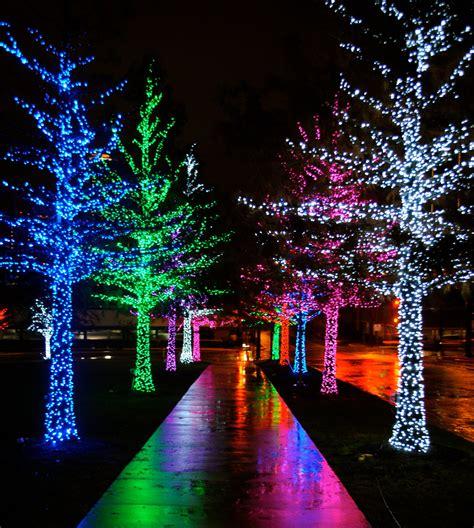 christmas lights date night martinis christmas lights