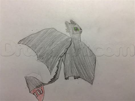 166428 how to train your dragon how to draw toothless from how to train your dragon
