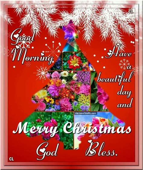 good morning merry christmas god bless pictures   images  facebook tumblr