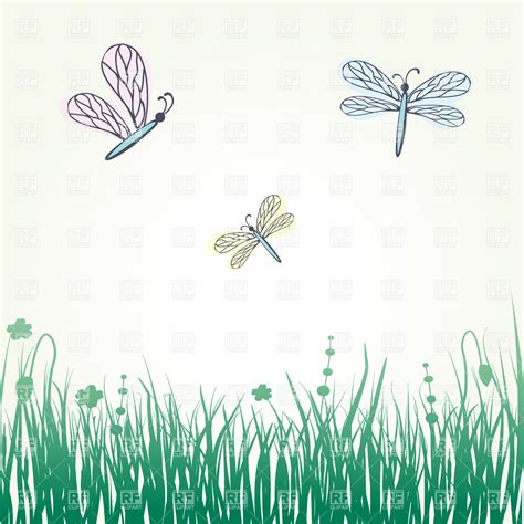 Or For Free Dragonfly Lawn Of Grass Royalty Free Vector Clip Image 21922 Rfclipart