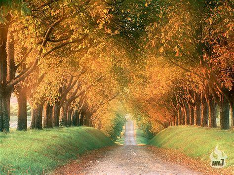 beautiful com beautiful wallpapers beautiful nature wallpapers