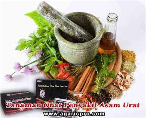 Obat Herbal Asam Urat 21 best images about info penyakit asam urat on watches diet and itu