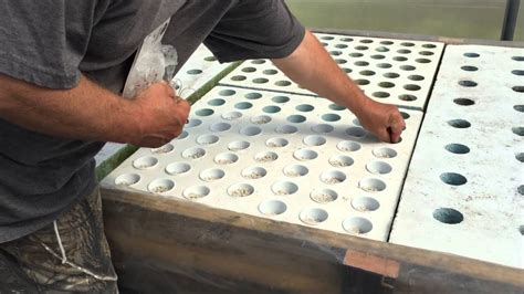 planting onion garlic   hydroponic floating raft bed