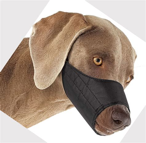 muzzle for biting muzzles for biting