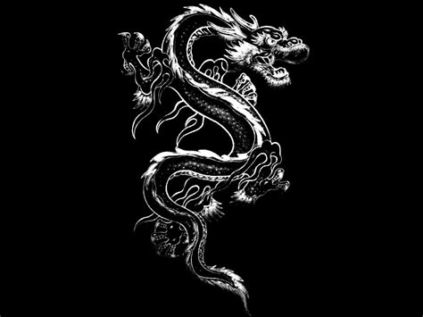 black and white dragon wallpaper black and white images of dragons 8 hd wallpaper