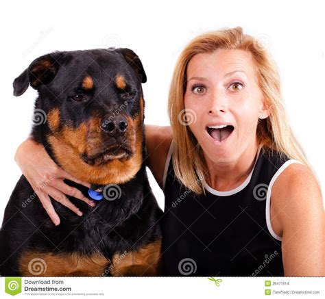 puppy not much me excited not so much stock photo image 26471914