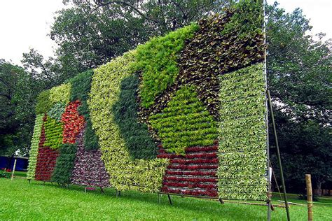imagenes muros verdes finitto