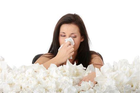 acari materasso rimedi allergia acari rimedi naturali medicina alternativa