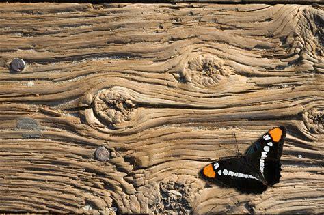 vendita tavole legno vendita legno antico di recupero parquet tavole assi