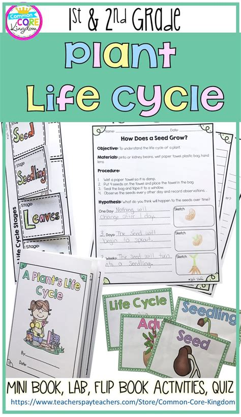plant life cycle lesson plans for 2nd grade life cycle 128 best common core kingdom images on pinterest reading