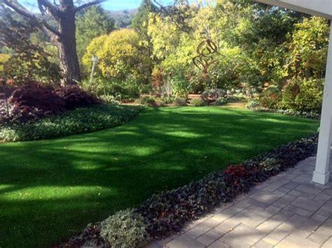 Backyard Rock Garden Ideas Fake Lawn Narrows Virginia Landscape Ideas Front Yard Design