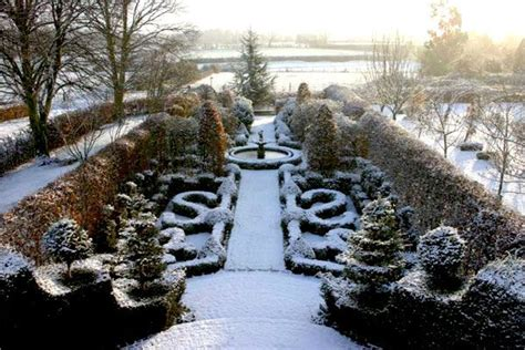 Winter Garden by 17 Best Images About Winter Garden On Trees And Shrubs And Walking Sticks
