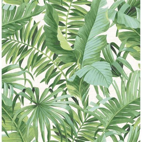 street  sq ft alfresco green palm leaf wallpaper