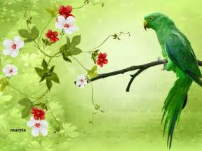 Awesome Parrot Picture with flower ? One HD Wallpaper