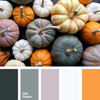 pumpkin color pumpkin color color palette ideas