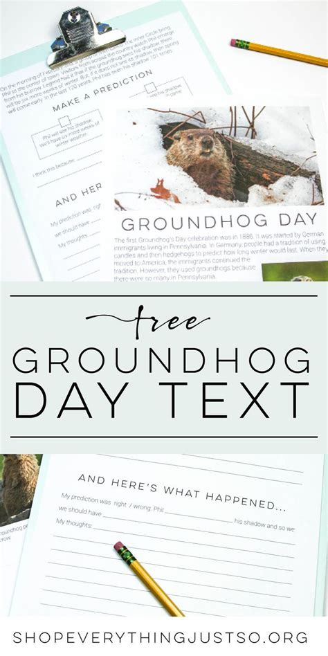 groundhog day script february a collection of ideas to try about education