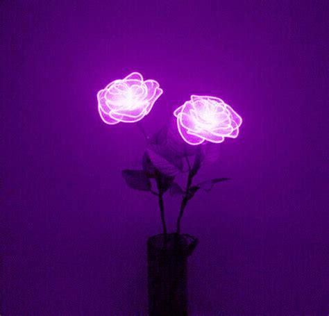 wallpaper tumblr violet violet neon tumblr