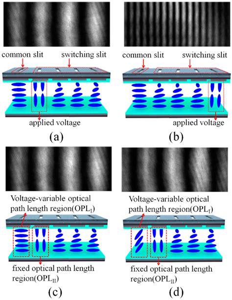 pattern generator text sensors free full text a 3d optical surface