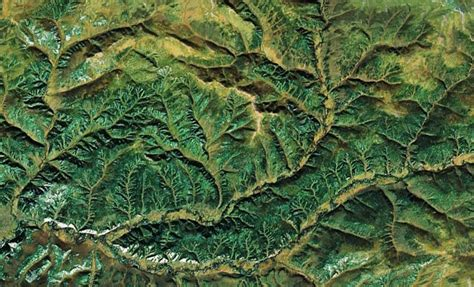 pattern seen in nature earth s most beautiful fractal patterns have to be seen to