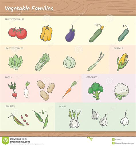6 fruit families vegetable families stock image image of family fresh