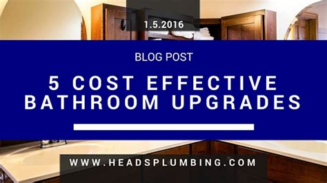 bathroom upgrade cost plumbing tips for pet owners head s plumbing sales and