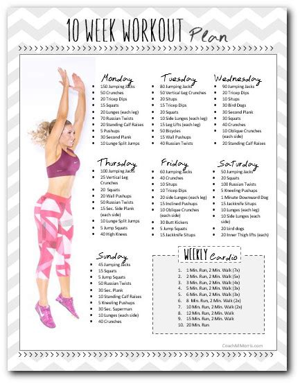 work out plan at home 10 week workout plan to insanity back