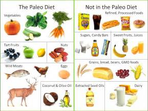 functional wisdom healthy updates from dr a start guide to paleo diet
