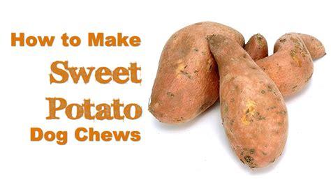 how to make sweet potato dog chews dogtipper com