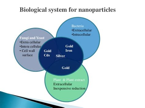Silica Nanoparticles Detox by Biological Methods For Nanoparticle Synthesis