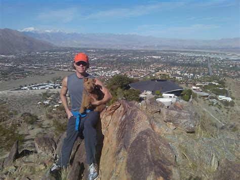 bob hope house palm springs how my personal journey from fat to fit applies to you and your pets dr patrick